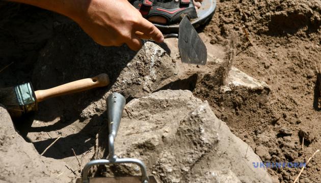 """""""Черные археологи"""" грабят раскопки на острове Березань"""