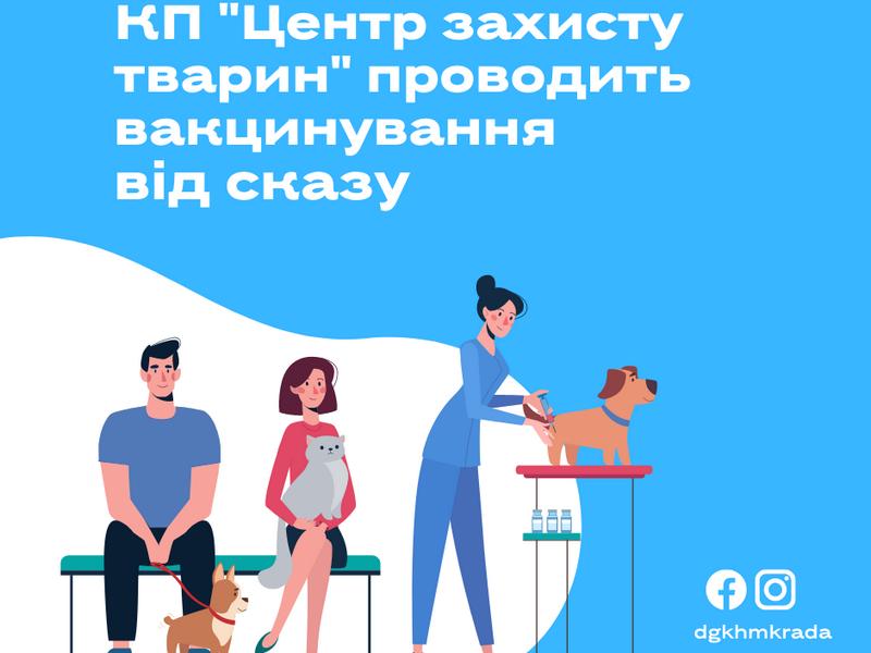 Сегодня в Николаеве можно бесплатно чипировать и привить от бешенства четвероногого любимца