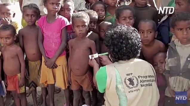 За прошлый год количество голодающих в мире выросло на 118 миллионов – ООН (ВИДЕО)