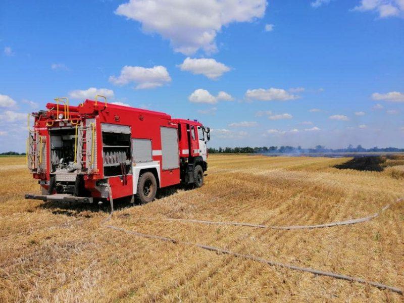У Баштанки горела пшеница на корню, а у Николаева – Балобановский лес (ФОТО)