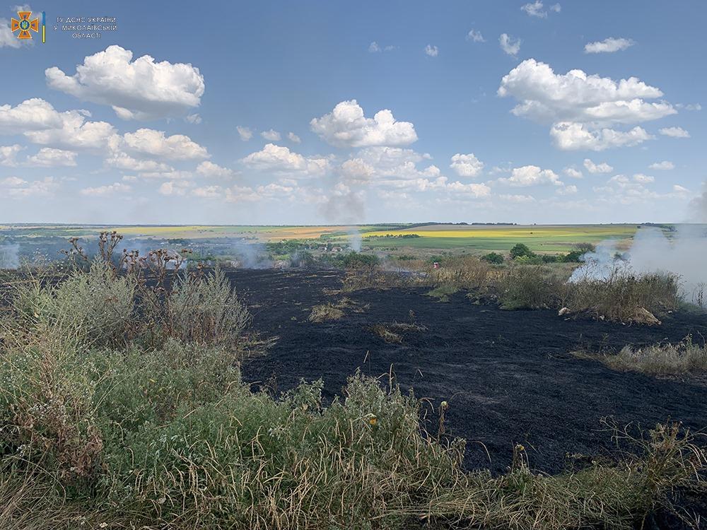За сутки на Николаевщине выгорело более 33 га открытых территорий (ФОТО) 1