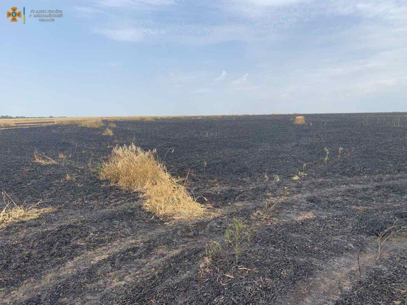 В Николаевской области уже выгорело 39 га зерновых