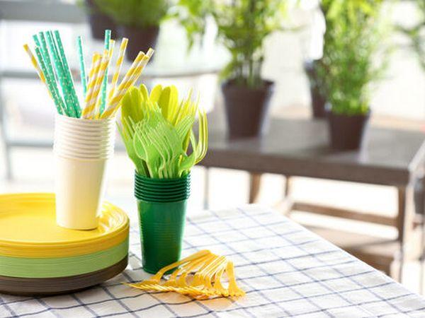 С сегодняшнего дня в Евросоюзе запретили продавать пластиковую посуду