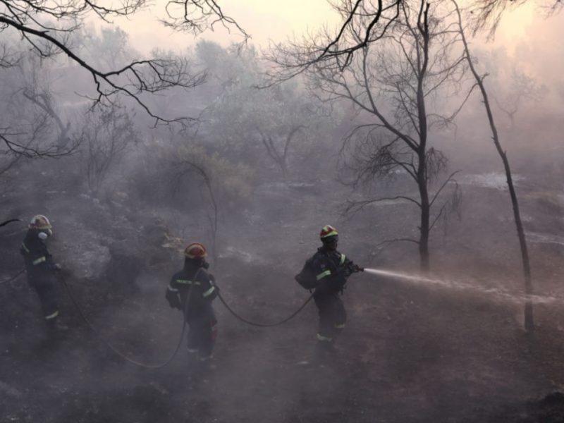 В Греции за последние сутки вспыхнули 46 лесных пожаров