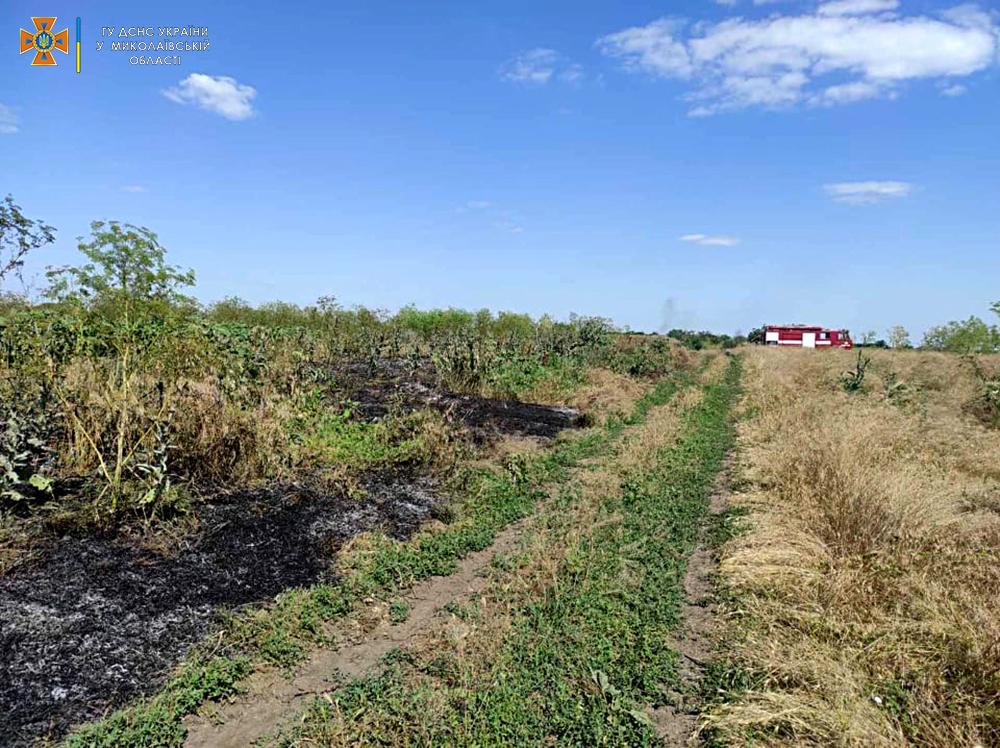 За сутки спасатели Николаевщины 7 раз выезжали на пожары в экосистемах (ФОТО) 3
