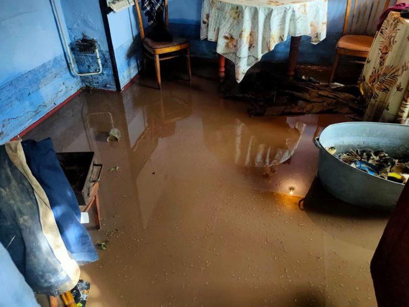Затопило: спасатели Николаевщины откачивали воду из домов и помещений (ФОТО)