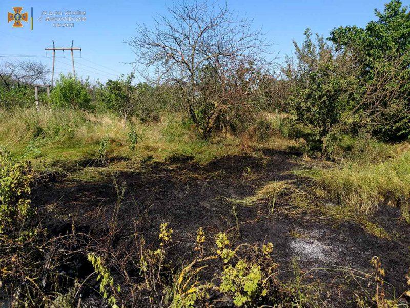За сутки спасатели Николаевщины 7 раз выезжали на пожары в экосистемах (ФОТО)