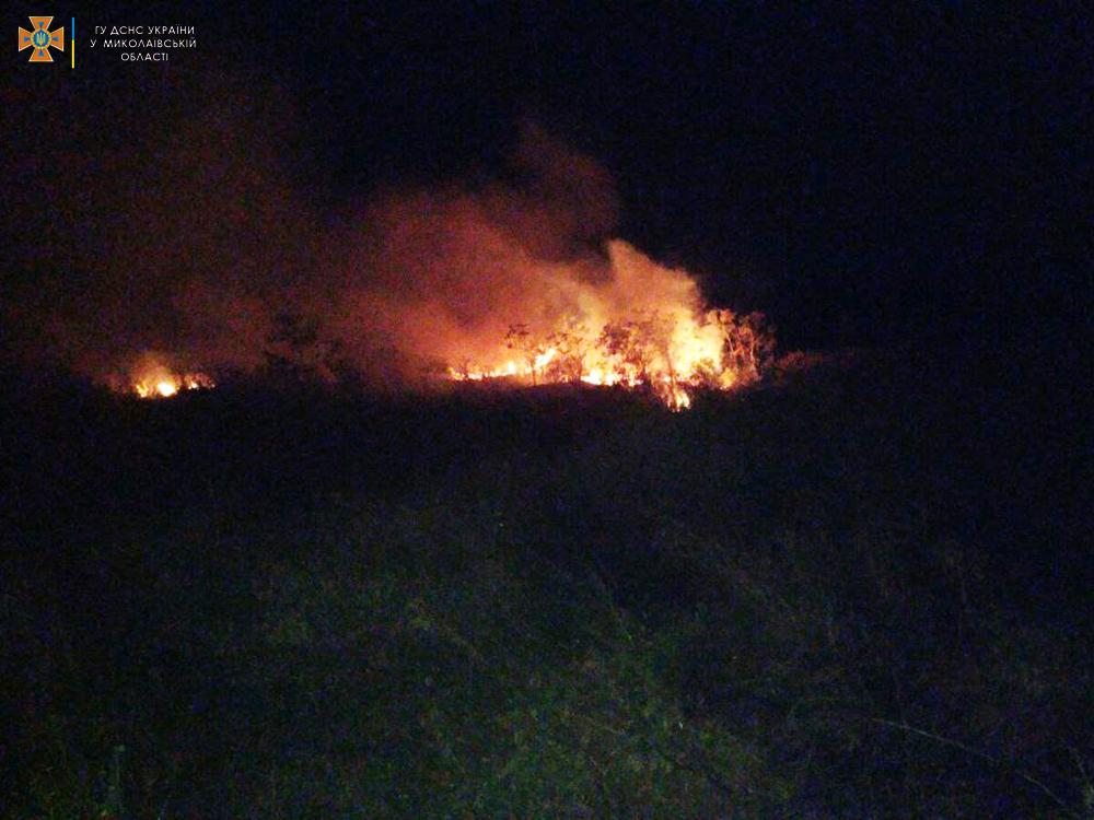 Сухая трава, мусор и стерня: на Николаевщине за сутки выгорело 12 га (ФОТО) 3