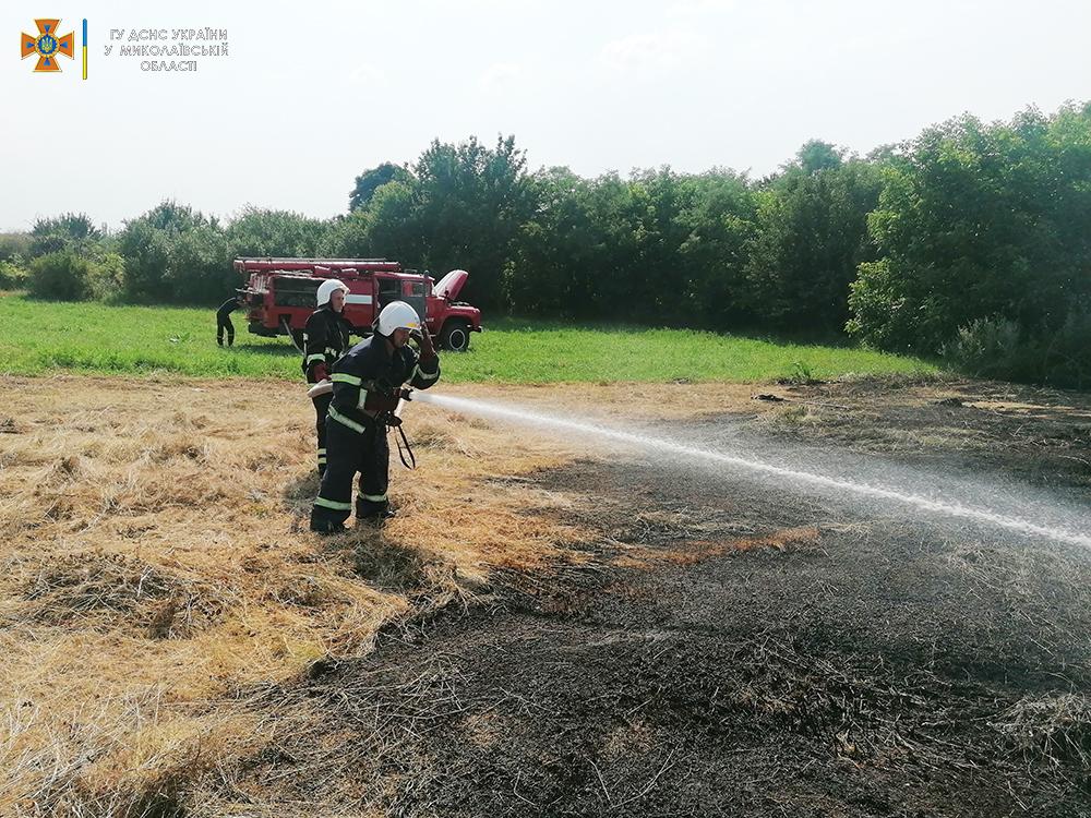 Стерня, пшеница на корню и трава - что тушили в Николаевской области (ФОТО) 3