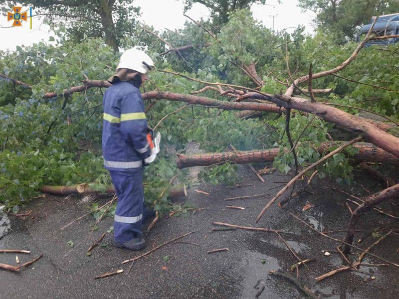 Ветер и ливни в двух районах Николаевщины завалили деревьями междугородние трассы (ФОТО)