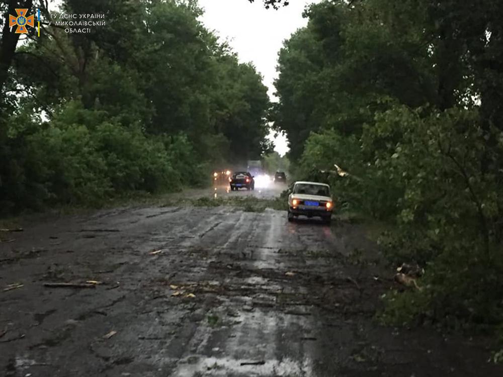 Ветер и ливни в двух районах Николаевщины завалили деревьями междугородние трассы (ФОТО) 1