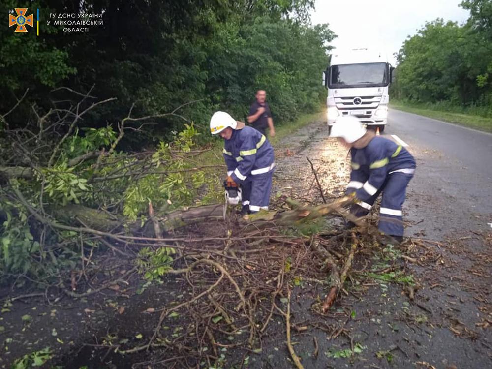 Ветер и ливни в двух районах Николаевщины завалили деревьями междугородние трассы (ФОТО) 5