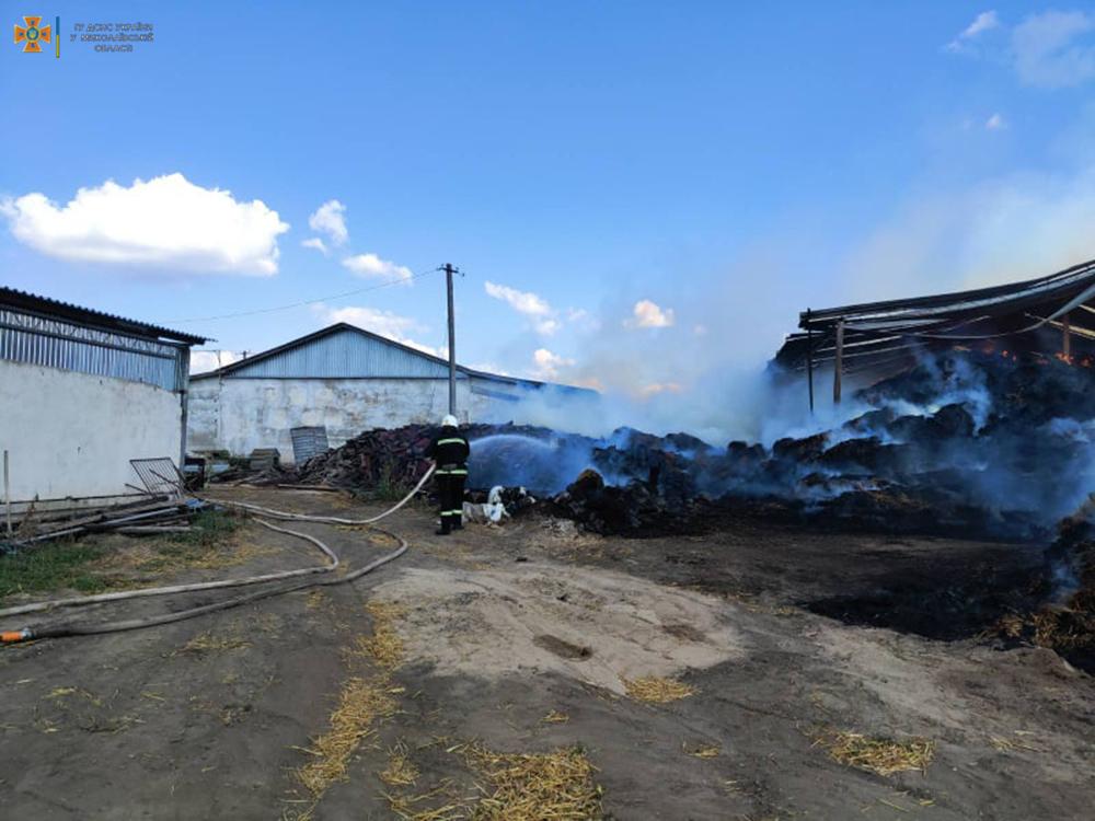 Возле Кривого Озера горит ферма (ФОТО) 5