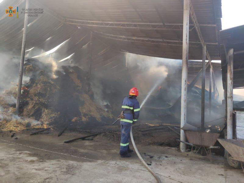 Возле Кривого Озера горит ферма (ФОТО)