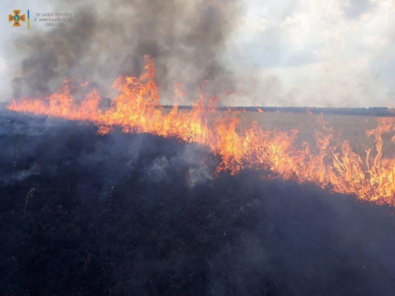 Сухая трава, мусор и стерня: на Николаевщине за сутки выгорело 12 га (ФОТО)