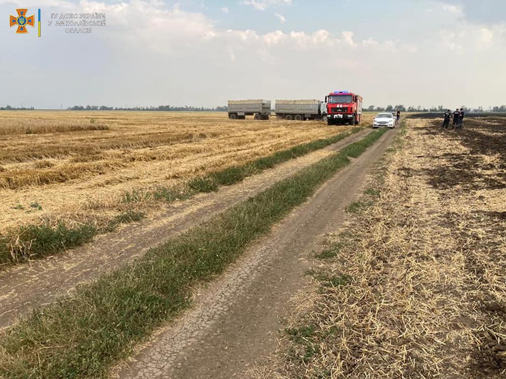Стерня, пшеница на корню и трава - что тушили в Николаевской области (ФОТО) 5