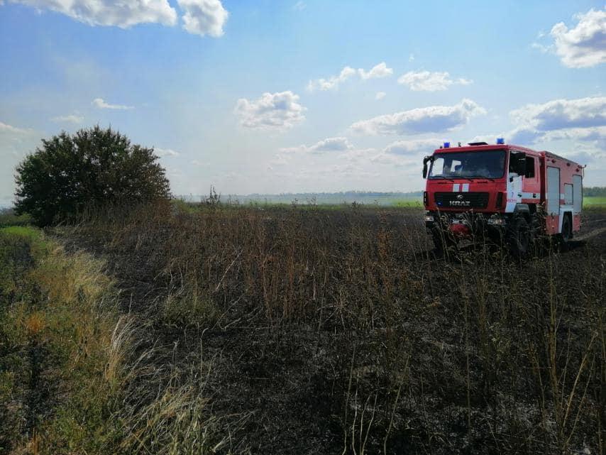 У Баштанки горела пшеница на корню, а у Николаева – Балобановский лес (ФОТО) 7