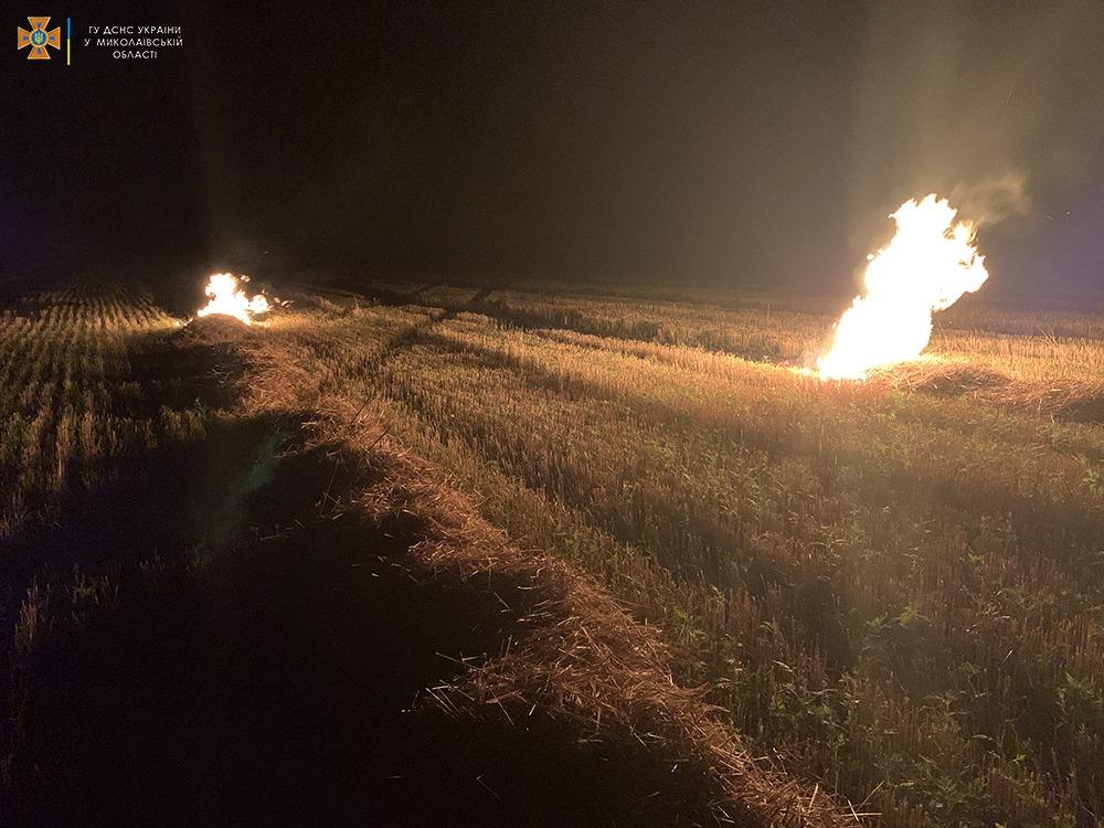 За сутки на Николаевщине выгорело более 33 га открытых территорий (ФОТО) 5