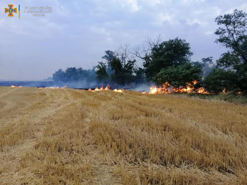 Стерня, пшеница на корню и трава - что тушили в Николаевской области (ФОТО) 7