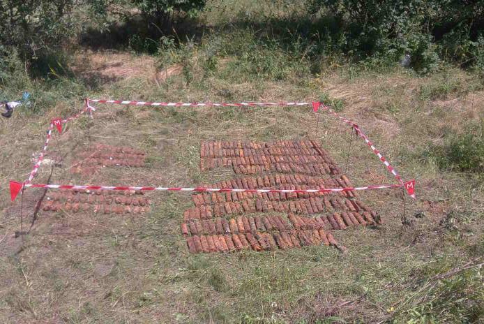 Неподалеку от Врадиевки нашли 300 артснарядов (ФОТО) 1