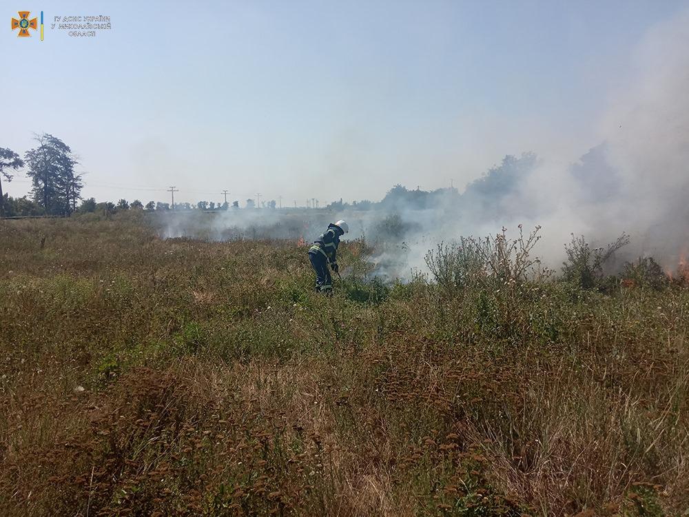 За сутки на Николаевщине выгорело более 33 га открытых территорий (ФОТО) 7