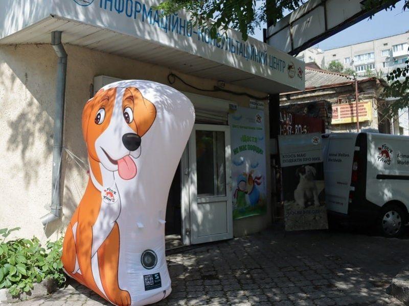 Счастье не имеет породы: в Николаеве открыли центр пристраивания бездомных животных (ФОТО)