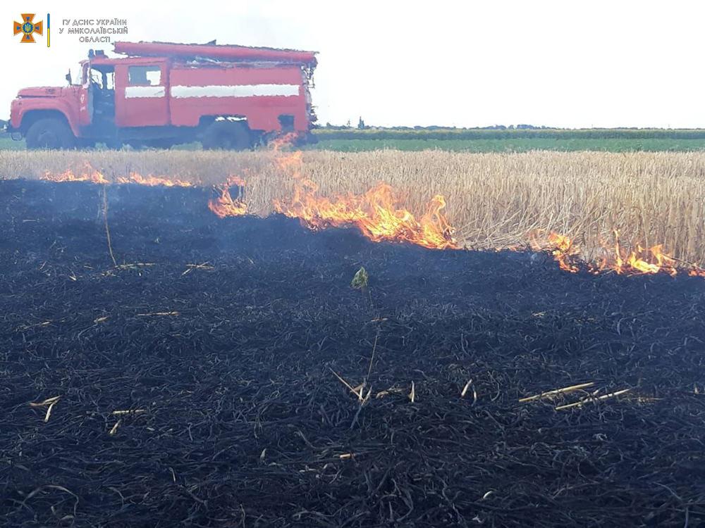 Сухая трава, мусор и стерня: на Николаевщине за сутки выгорело 12 га (ФОТО) 9