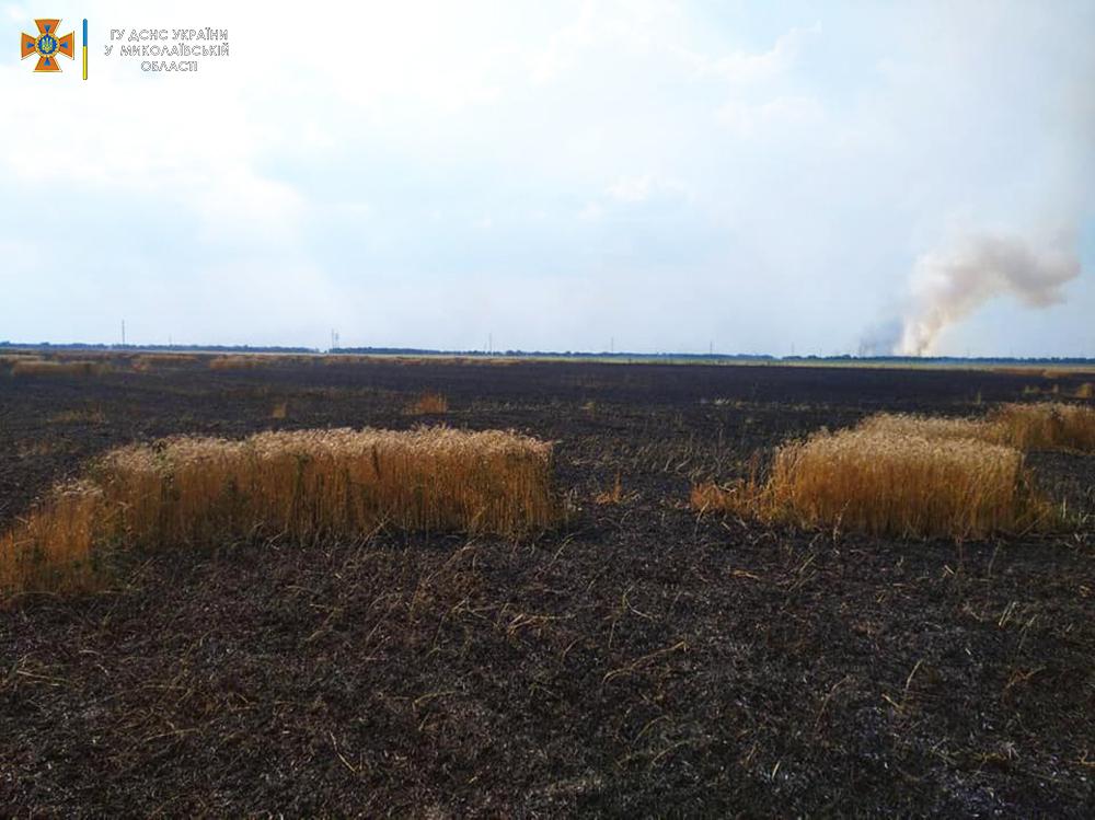Стерня, пшеница на корню и трава - что тушили в Николаевской области (ФОТО) 9