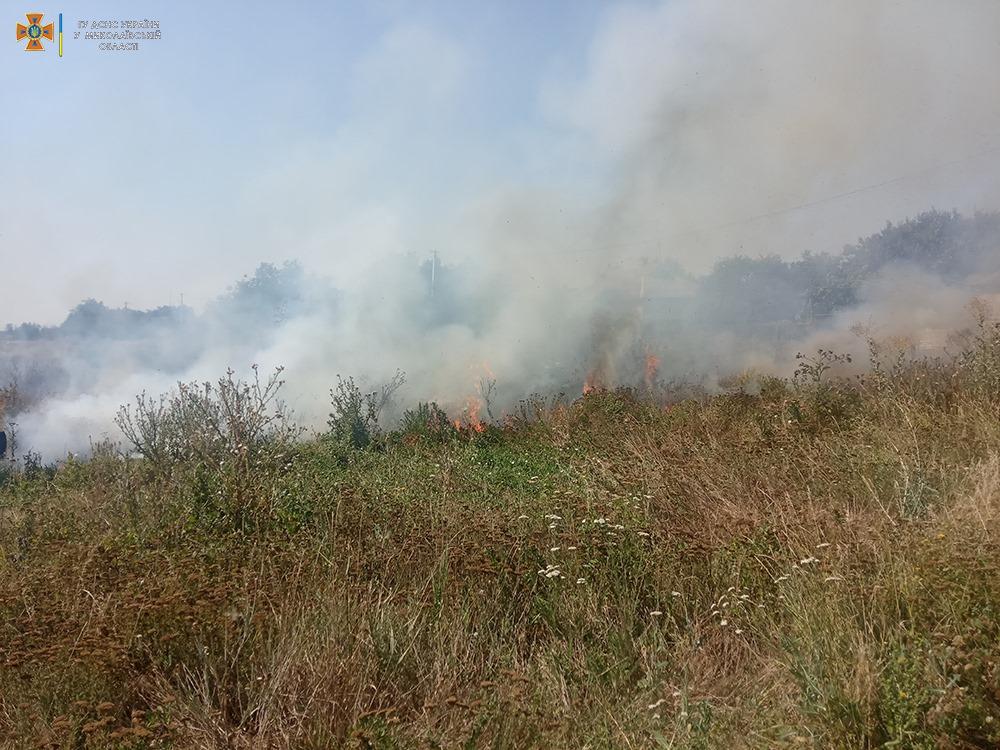 За сутки на Николаевщине выгорело более 33 га открытых территорий (ФОТО) 9