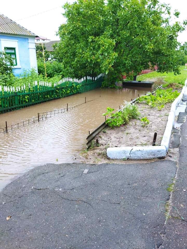 Затопило: спасатели Николаевщины откачивали воду из домов и помещений (ФОТО) 9