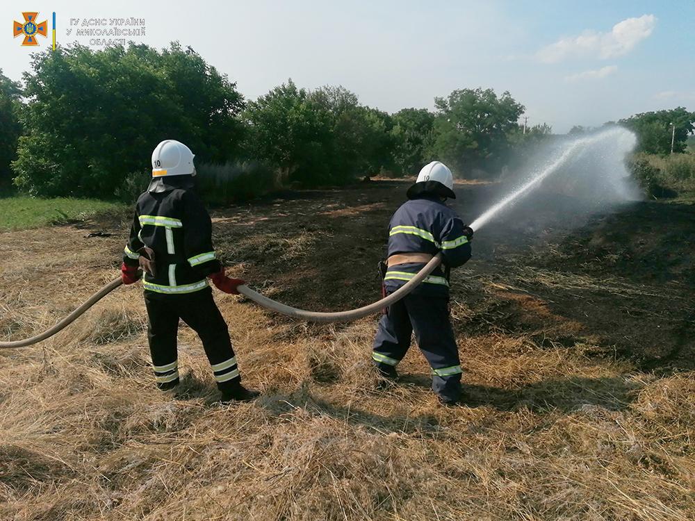 Стерня, пшеница на корню и трава - что тушили в Николаевской области (ФОТО) 11