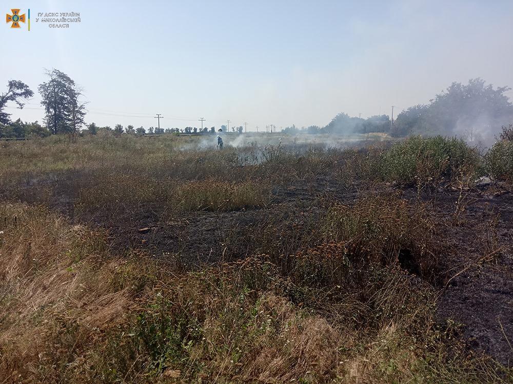 За сутки на Николаевщине выгорело более 33 га открытых территорий (ФОТО) 11