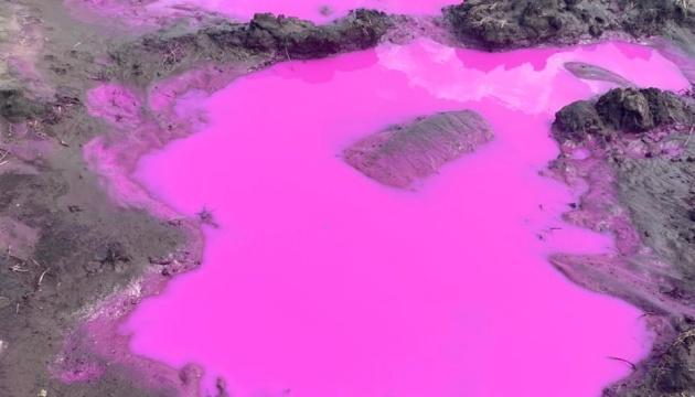 Под Ривне новая напасть — розовые лужи. В ГСЧС выяснили, что это за химия (ФОТО, ВИДЕО)