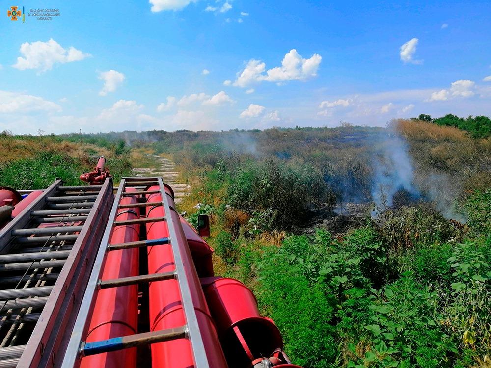 За сутки на Николаевщине выгорело более 33 га открытых территорий (ФОТО) 13