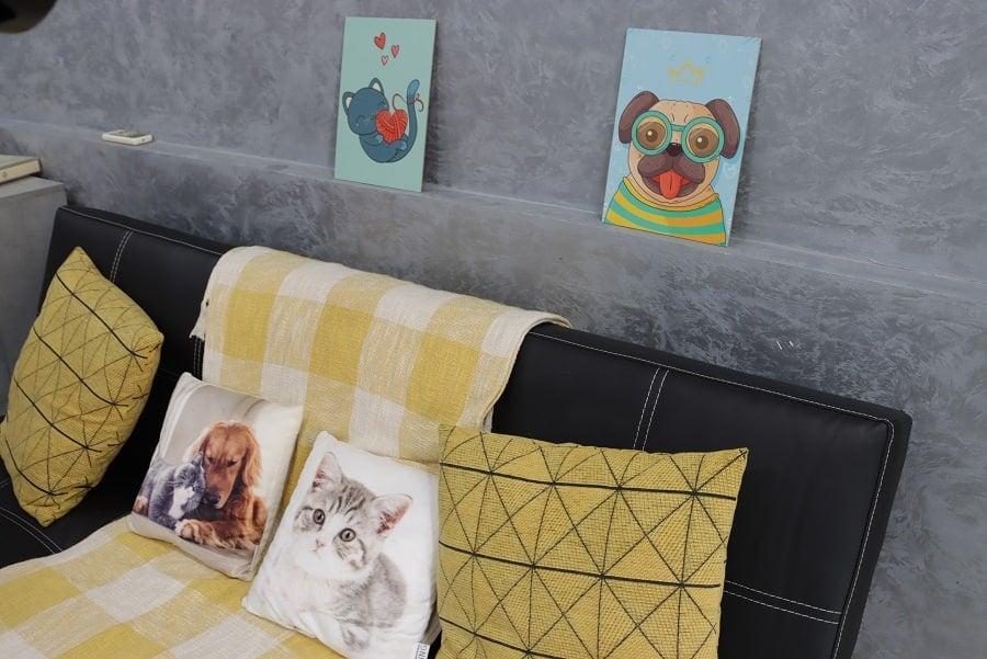Счастье не имеет породы: в Николаеве открыли центр пристраивания бездомных животных (ФОТО) 13