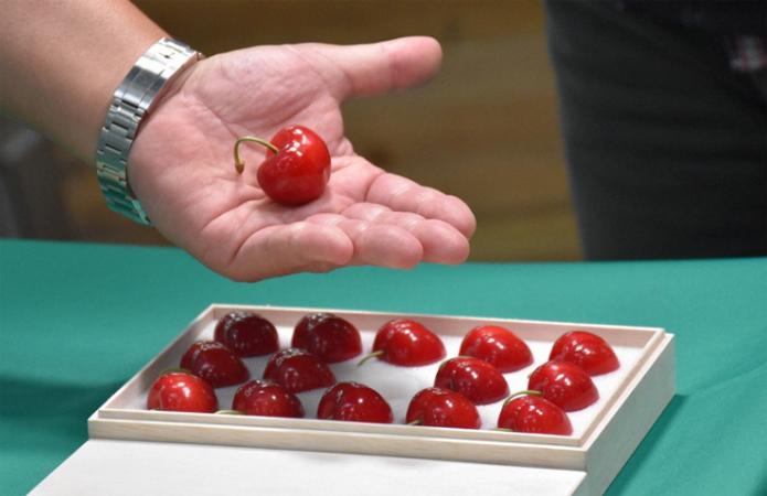 """В Японии на аукционе продали гигантскую черешню по $270 за штуку. У нас такая же """"ушла"""" по 45 грн. за кило (ФОТО) 1"""