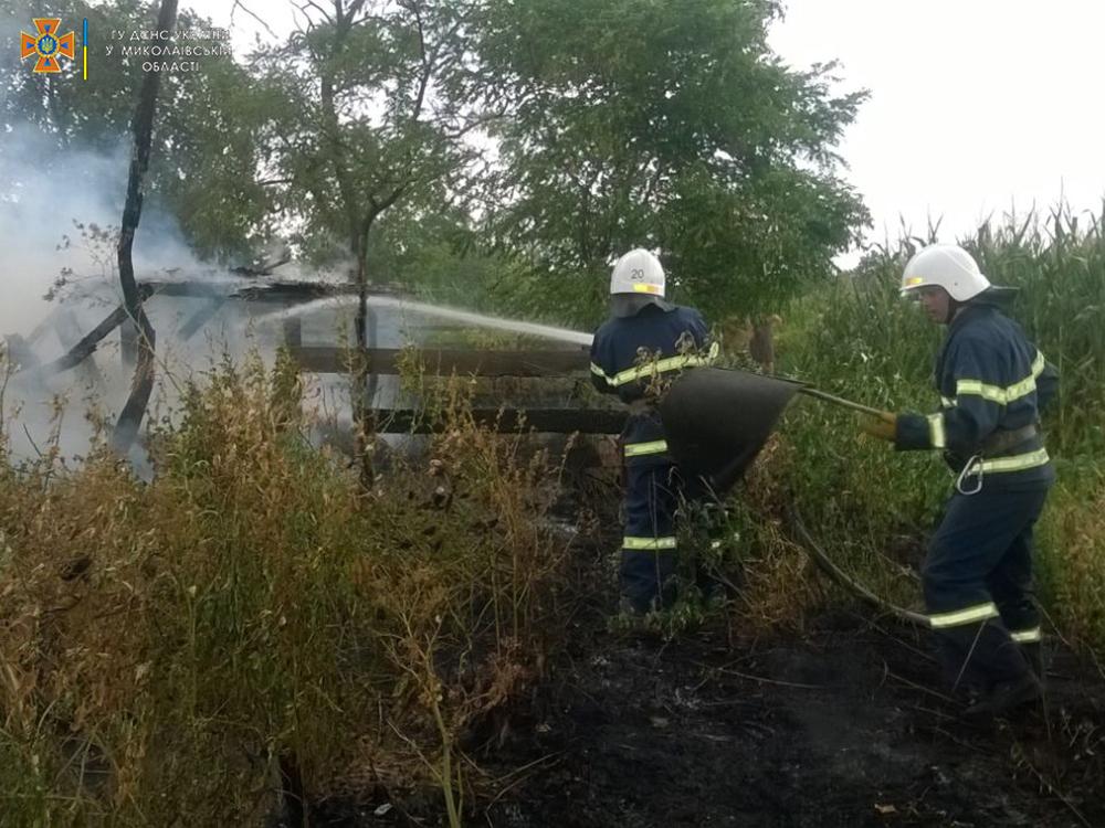 Стерня, пшеница на корню и трава - что тушили в Николаевской области (ФОТО) 15