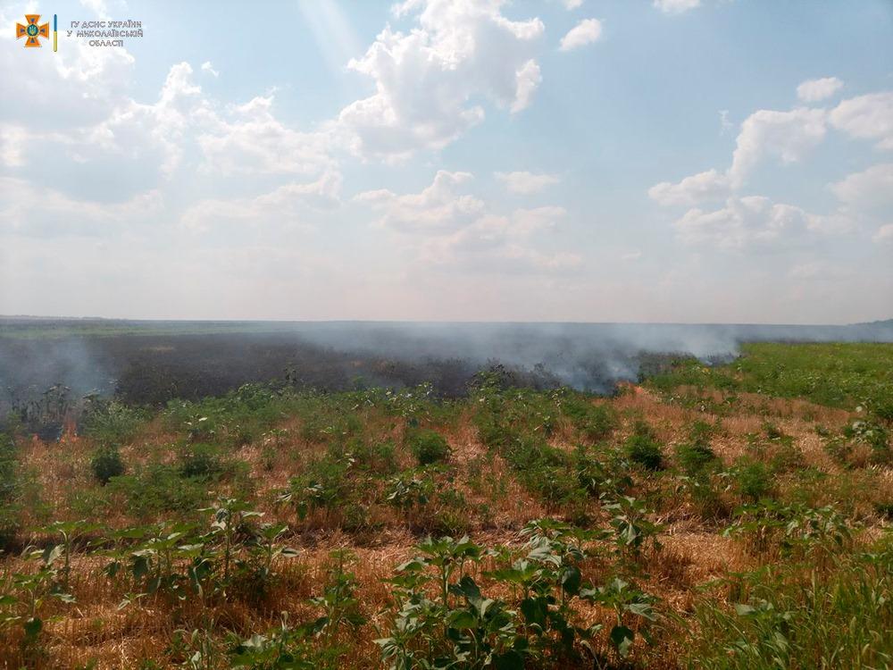 За сутки на Николаевщине выгорело более 33 га открытых территорий (ФОТО) 15