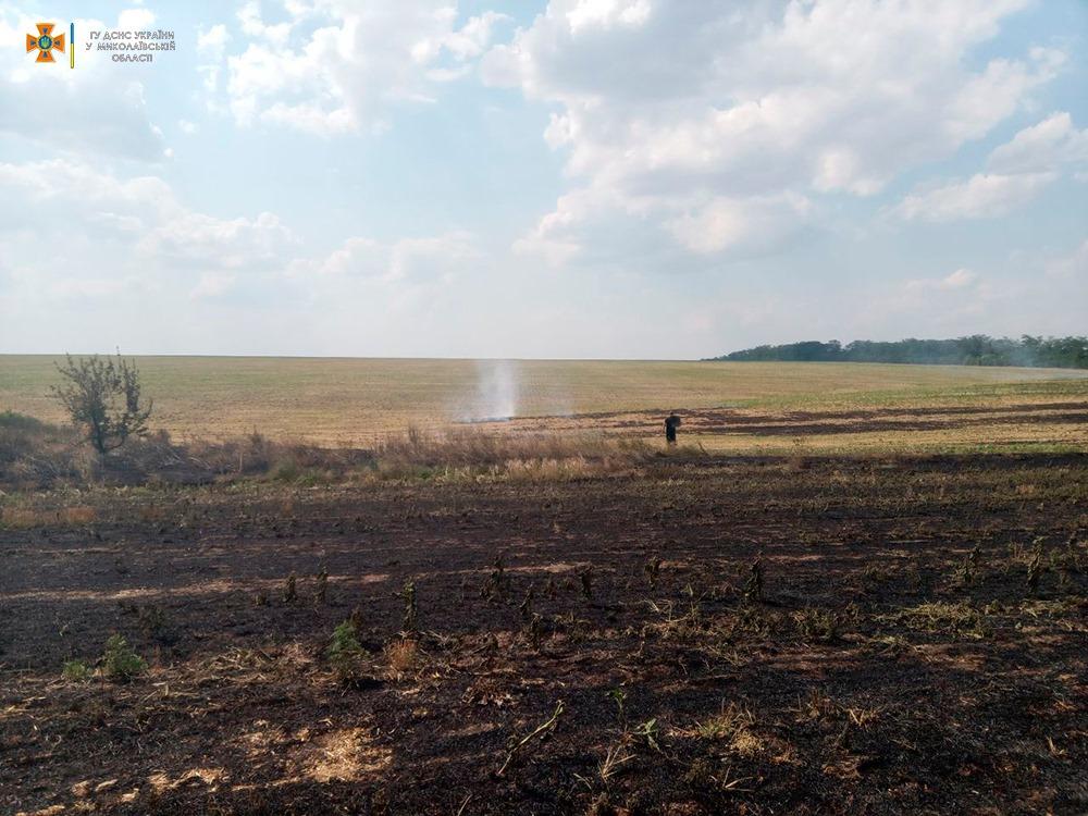 За сутки на Николаевщине выгорело более 33 га открытых территорий (ФОТО) 17