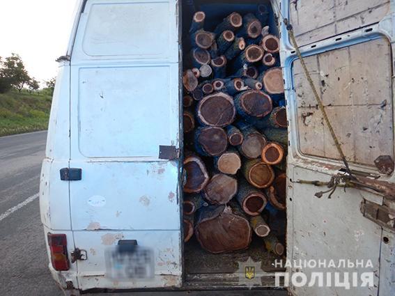 И снова Вознесенск. Туда водитель без документов вез спиленные деревья без документов (ФОТО) 3