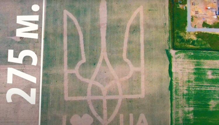 Под крылом самолета – живой и рекордный герб Украины (ВИДЕО)