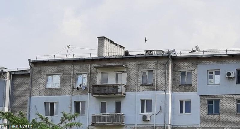 Могут нанять шамана, — чиновник ЖКХ дал совет жителям многоэтажки в Николаеве, крышу которой сорвал ветер