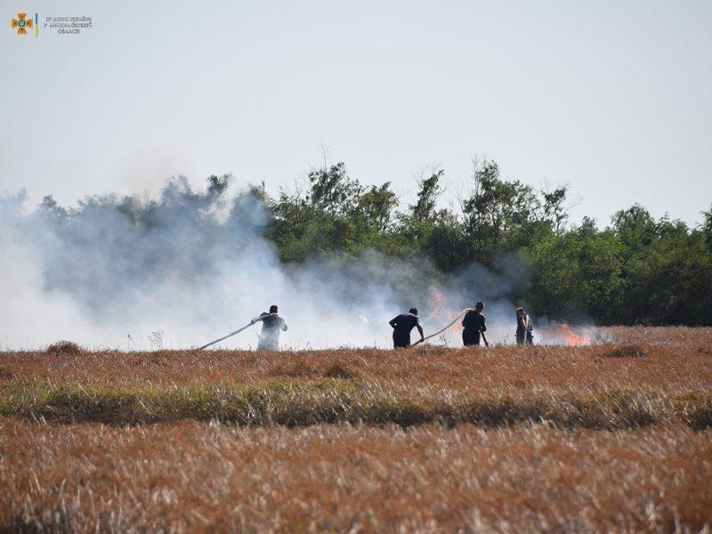 За сутки на территории Николаевской области выгорело 50 га открытых территорий (ФОТО)