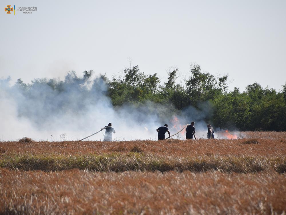 За сутки на территории Николаевской области выгорело 50 га открытых территорий (ФОТО) 1