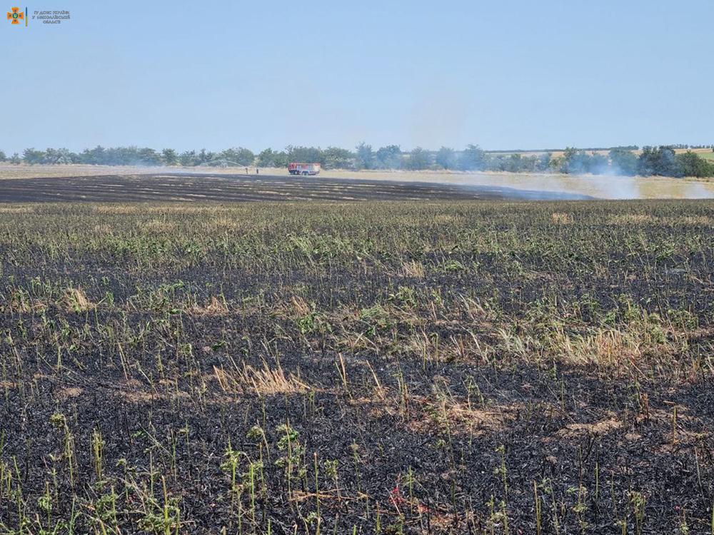 На Николаевщине за сутки выгорело более 49 га открытых территорий (ФОТО) 1