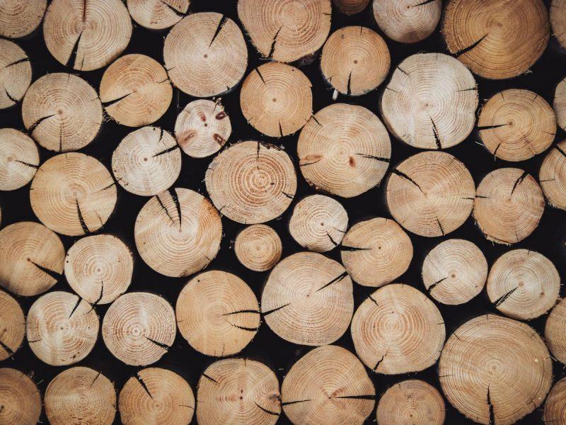 Финны из древесины будут делать аккумуляторы для электромобилей