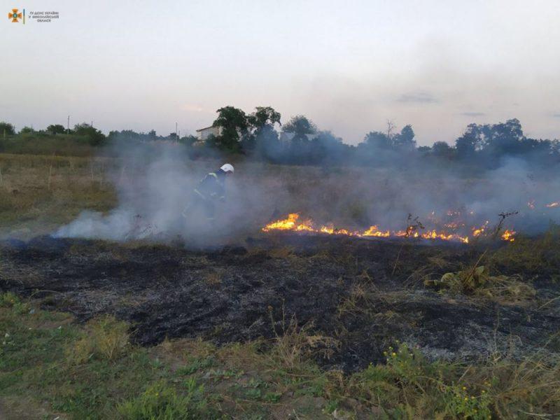 Вчера на Николаевщине тушили Балобановский лес и 2,3 га открытых территорий (ФОТО)