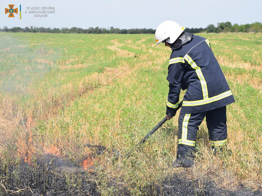 На Николаевщине за сутки выгорело более 48 га открытых территорий - пострадал один человек (ФОТО) 1