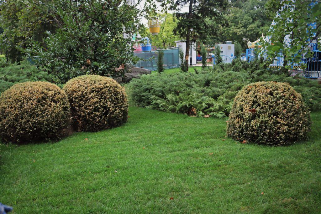 В Николаеве 21 августа наконец-то откроют детский городок «Сказка» (ФОТО) 35