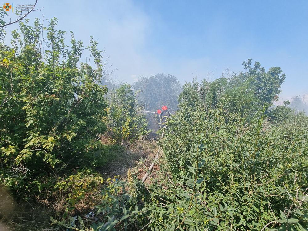 Вчера на Николаевщине тушили Балобановский лес и 2,3 га открытых территорий (ФОТО) 5